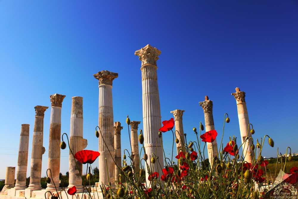 Soli Pompeiopolis Antik Kenti, Mezitli